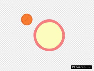 Coral Tangerine 2