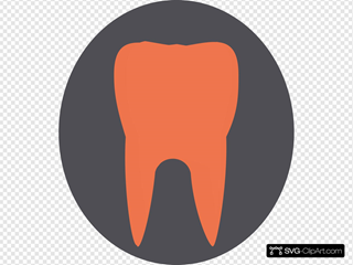 Orange Tooth