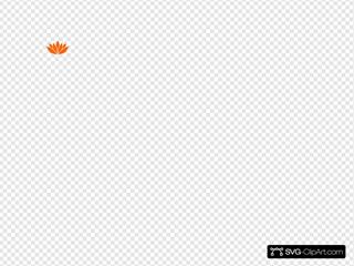 Dark Orange Lotus Flower Picture