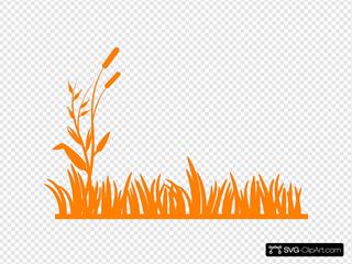 Orange Meadow