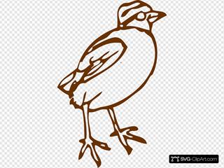 Brownbird SVG Clipart