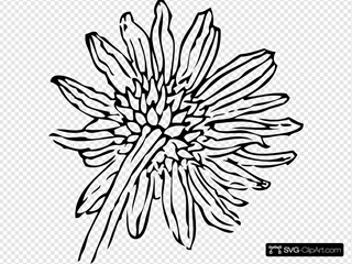 Back Of A Sunflower SVG Clipart