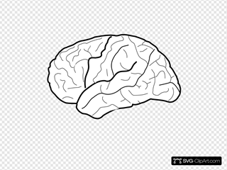 white brain svg vector white brain clip art svg clipart white brain svg vector white brain
