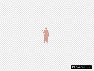 Female Body Four