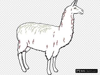 Llama Outline Clean
