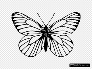 Butterfly Outline SVG Clipart