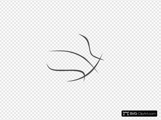 Basketball Transparent Outline