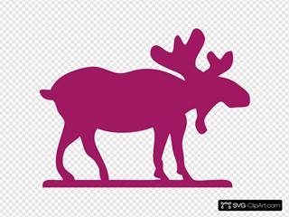 Pink Moose2