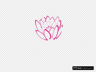 12 Petal Pink Lotus