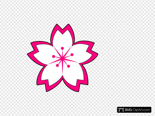 Sakura SVG Clipart