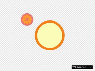 Newest Orange