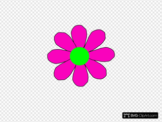 Pink With Green Daisy