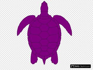 Plum Sea Turtle