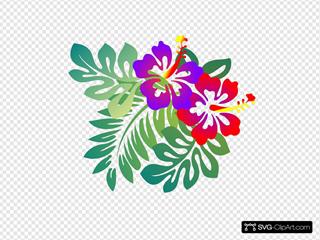 Hibiscus Top Right