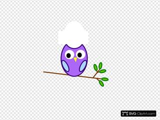 Purple Modified Owl