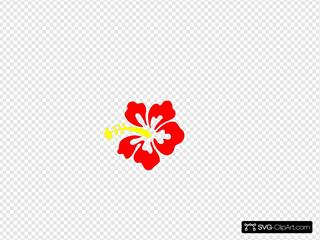 Hibiscus Roja Angie