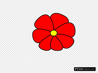Hawaiin Flower