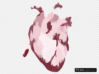 Heart Vintageanatomy Graphicsfairy Red