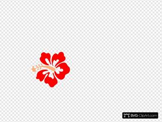 Coral Hibiscus Clipart
