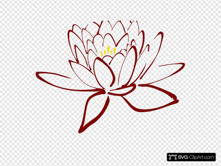 Yellow Purple Lotus