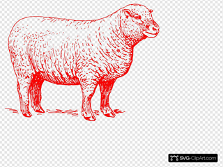 Red Sheep Outline