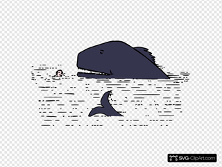 Tail Of A Whale