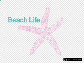 Coral Starfish - Beach Life Sign