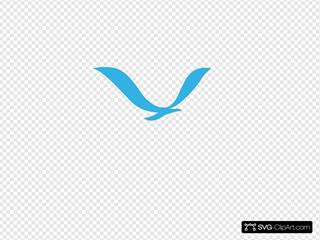 Noaa Bird