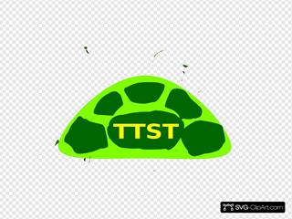 Ttst Stirt2