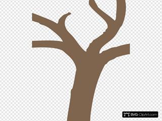Dark Tree Trunk