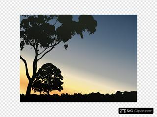 Sunset in Tree Clip Art