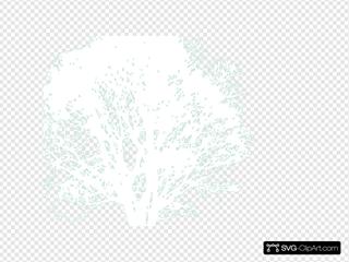 Tree Seal