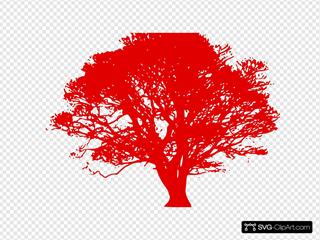Tree, Dark Red Silhouette, White Background