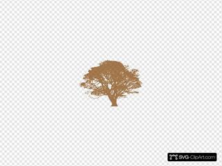 Trans. Tree