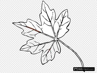 Clip Art Maple Leaf Dromgco Maple Leaf PNG Image Vector And Clipart -  Premio Codespa