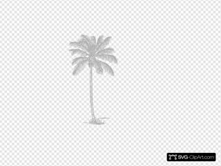 Gray Palm Tree