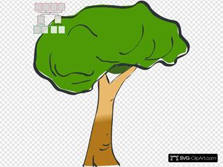 Family Tree - 3-generation