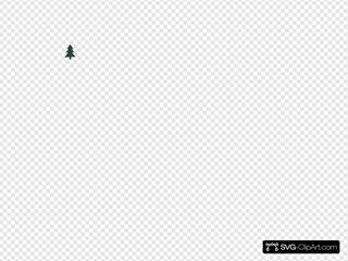 Small Pointy Pine Tree