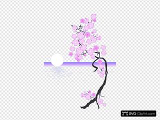 Cherry Blossom Tree In The Moonlight