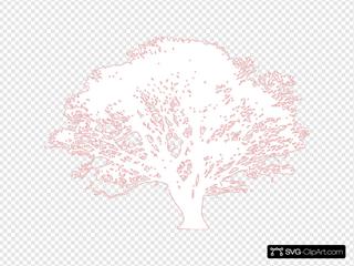 White Tree Pink
