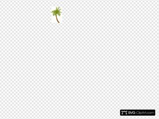 Small Palm Tree (edited)