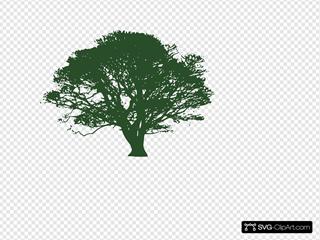 Dark Green Tree
