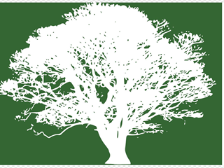 Tree For Invitation