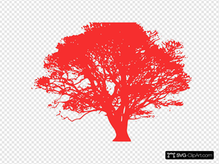 Tree, Red Silhouette, White Background