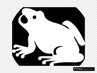 White Frog Silhouette With Black Background