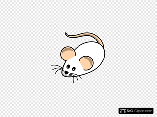 Field Mouse White