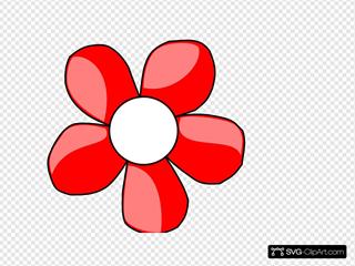 Red Daisy White Center
