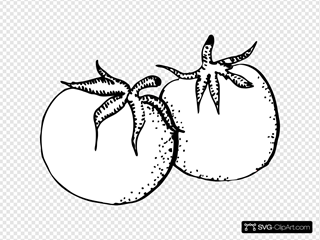 Tomatoes Black And White