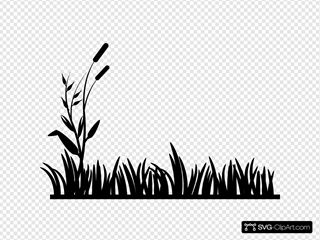 Cattail Png, Vector, PSD, and Clipart With Transparent Background for Free  Download | Pngtree