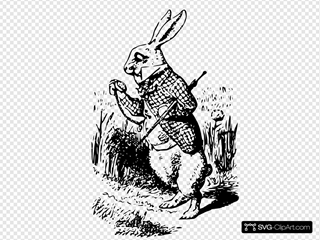 Alice In Wonderland The White Rabbit